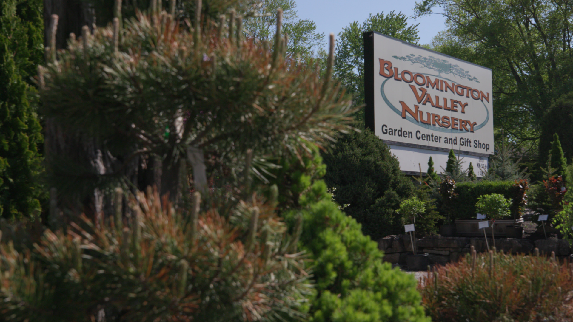 On this picture you can see a sign advertising the Bloomington Valley Nursery.