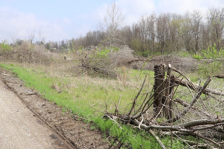 On this picture you can see grass covering the former McDoel Railroad Switchyard.
