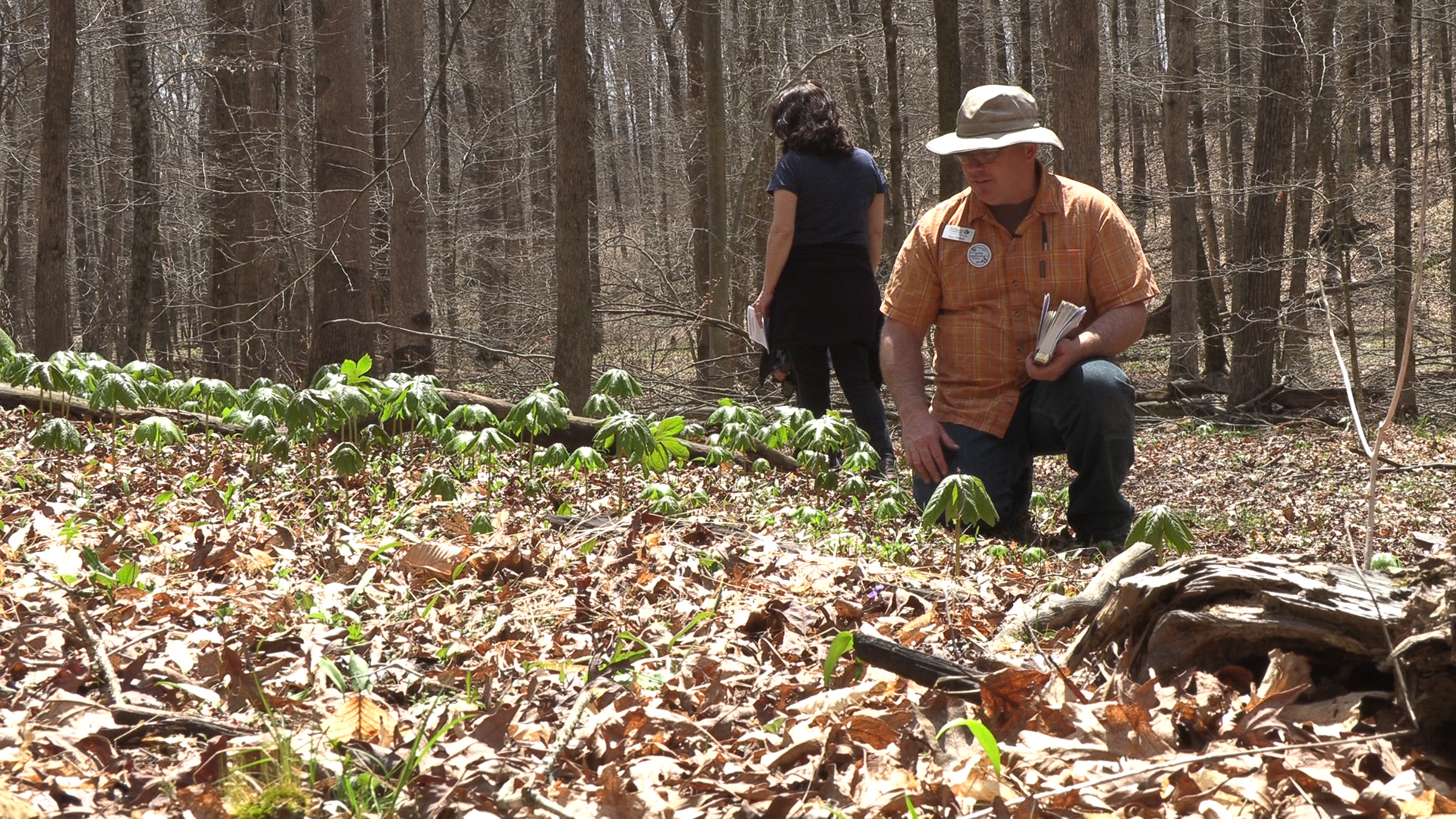 On this picture you can see Dan Shaver of the Nature Conservancy leading the Fire and Flowers tour.