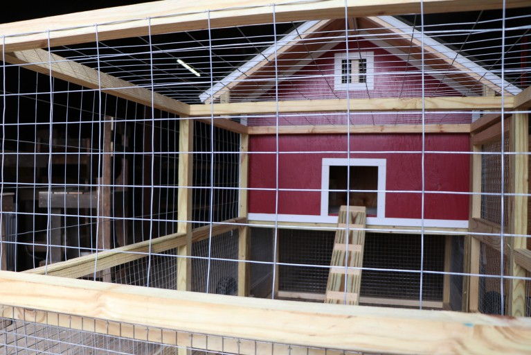 A photo of the chicken coop